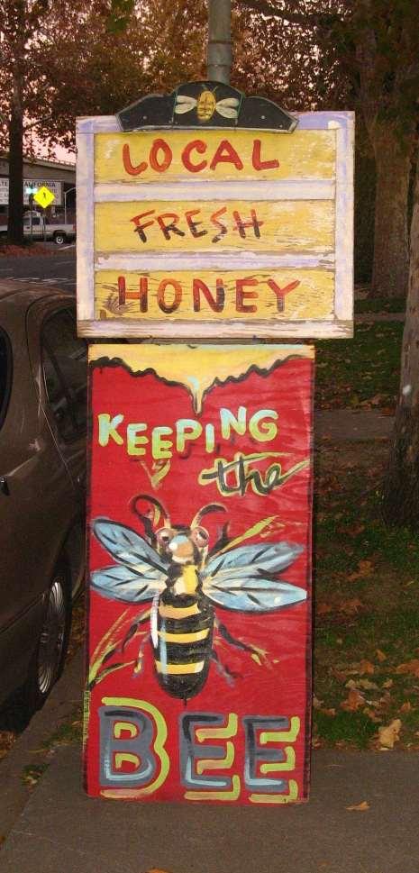 Local Honey Store Credit Barbara Steinberg