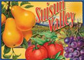 Susiun valley logo