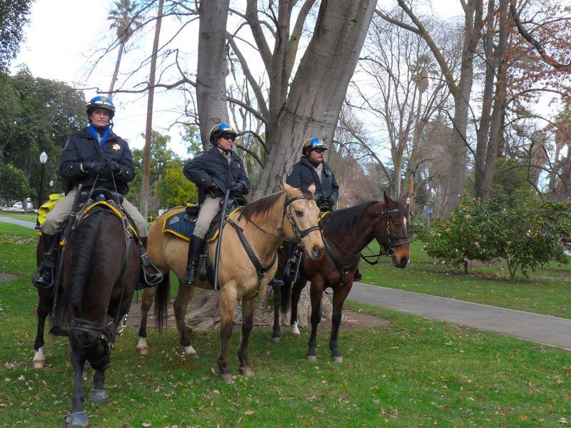Sacramaento Tour of California Horse Police Credit Barbara Steinberg 2009