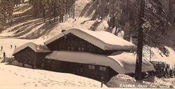 Yosemite Vintage Badger Pass Postcard