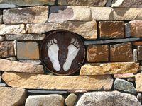 Signs of Wilbur Feet in Rock