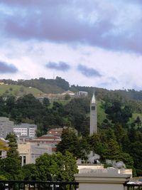 Berkeley Credit Barbara L Steinberg