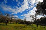 Rockville Trails Credit Jorg Fleige