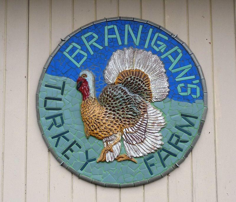 Brannigans Woodland1