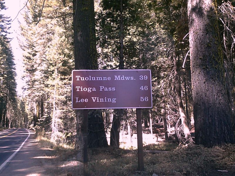 Road signs for Tioga Pass 2013
