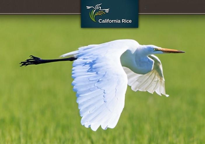 Calfiornia Rice Commission