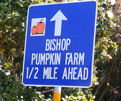 Bishop Pumpkin Farm Credit Are You That Woman