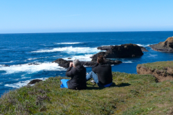 Mendocino Headlands Whale Watching Credit Barbara Steinberg