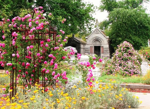 Gardens at Sacramento Old City Cemetery Credit Anita Clevenger3