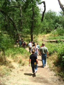 Hike at Effie Yeaw Credit Barbara Steinberg