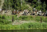Dudes Greenhorn Creek Guest Ranch