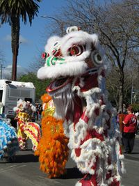 Stockton Chinese New Year's Festival 2015 Credit Barbara L Steinberg 0109
