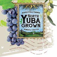 North Yuba logo