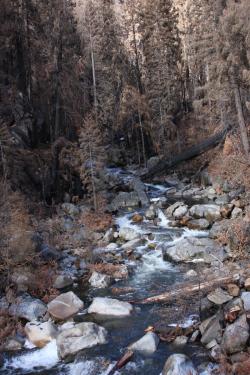 Rim Fire North Fork of the Tuolumne River Creidt Sierra Nevada Conservancy