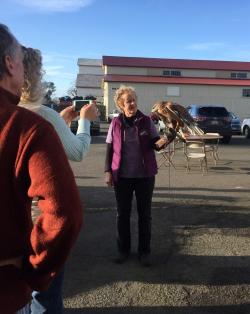 Jenny Papka, Native Bird Connections (1)