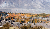 Over Look Hilton Creek Eastern Sierra Fall foliage  Hwy 395 Credit Barbara L Steinberg