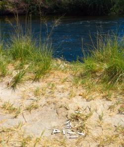 Lower Owens River Marlboro Butts 2008 Credit Barbara Steinberg