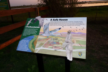 Woodbridge Ecological Reserve Interpretive Sign Credit Barbara Steinberg_preview