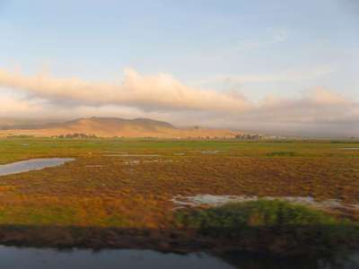 Suisun_marsh_blog_credit_barbara_st