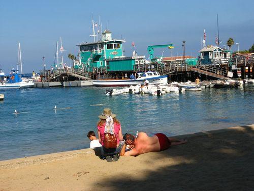 Santa Catalina Island Credit Barbara L. Steinberg©